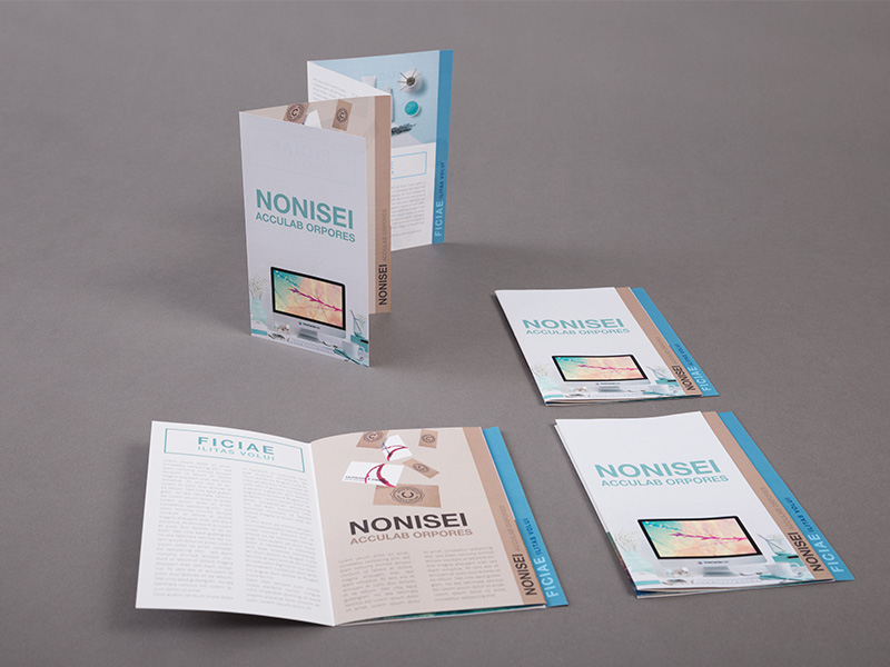 Product details Folded Leaflets - Stair Step Fold 1